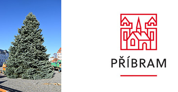 Vánoční strom na náměstí T. G. Masaryka